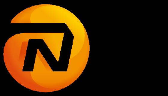 logo NN Life Luxembourg