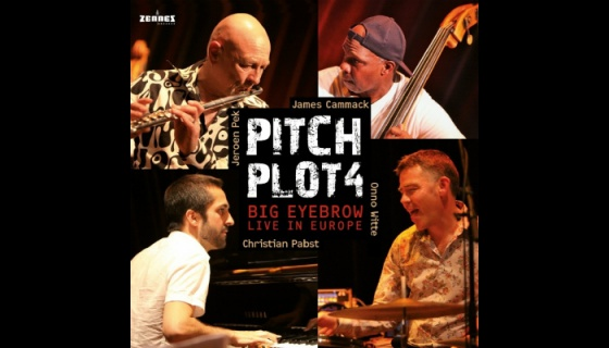 Pitch Plot 4 - Big Eyebrow tour